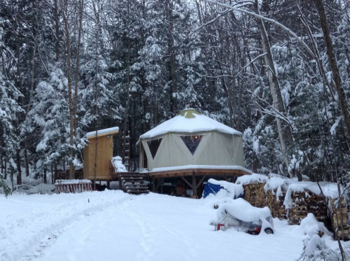 Snowy forest scene with small home Yome dwelling in the Appalachian mountains