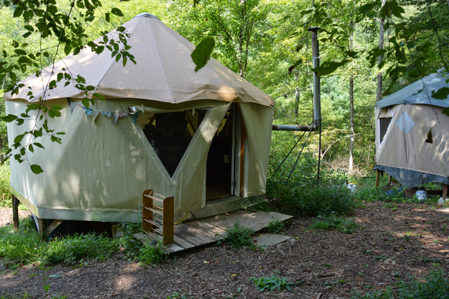 A group of Yome yurt tent homes in the forest