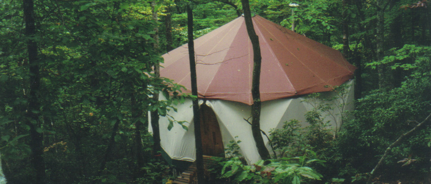 Deep in the forest a warm looking Yome tent home welcomes its friends home