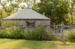 Rental yurt at a campground with flowers and fencing